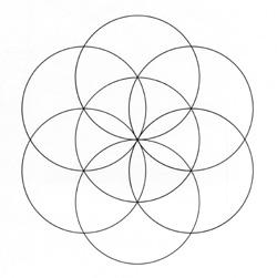 Genesis Muster